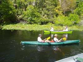 32. Wekiwa Springs State ParkEnjoy hiking, nature trails, fishing, swimming, campfires, and a nature museum and interpretive exhibit in the park's Nature Center. (Regular admission to the park is $6 per vehicle.Address:1800 Wekiwa Cir., Apopka, FL 32712
