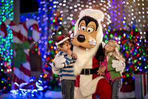 Santa Goofy joins the fun during The Osborne Family Spectacle of Dancing Lights at Disney's Hollywood Studios. Making nightly appearances on the Streets of America, this jovial character greets guests in Goofy's Winter Wonderland.