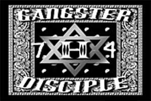 The Gangster Disciples - This gang was formed in Chicago mid-1960s. The Gangster Disciples are structured like a corporation, according to the DOJ.Membership: 25,000 - 50,000 individuals in 110 cities and in 31 statesSource of income: Distribution of cocaine, marijuana and heroinOther crimes: Assault, auto theft, fraud, homicide and money laundering
