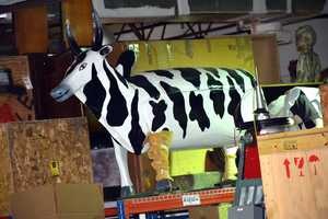 Cow coffin