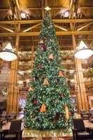 Christmas Tree at Disney Wilderness Lodge