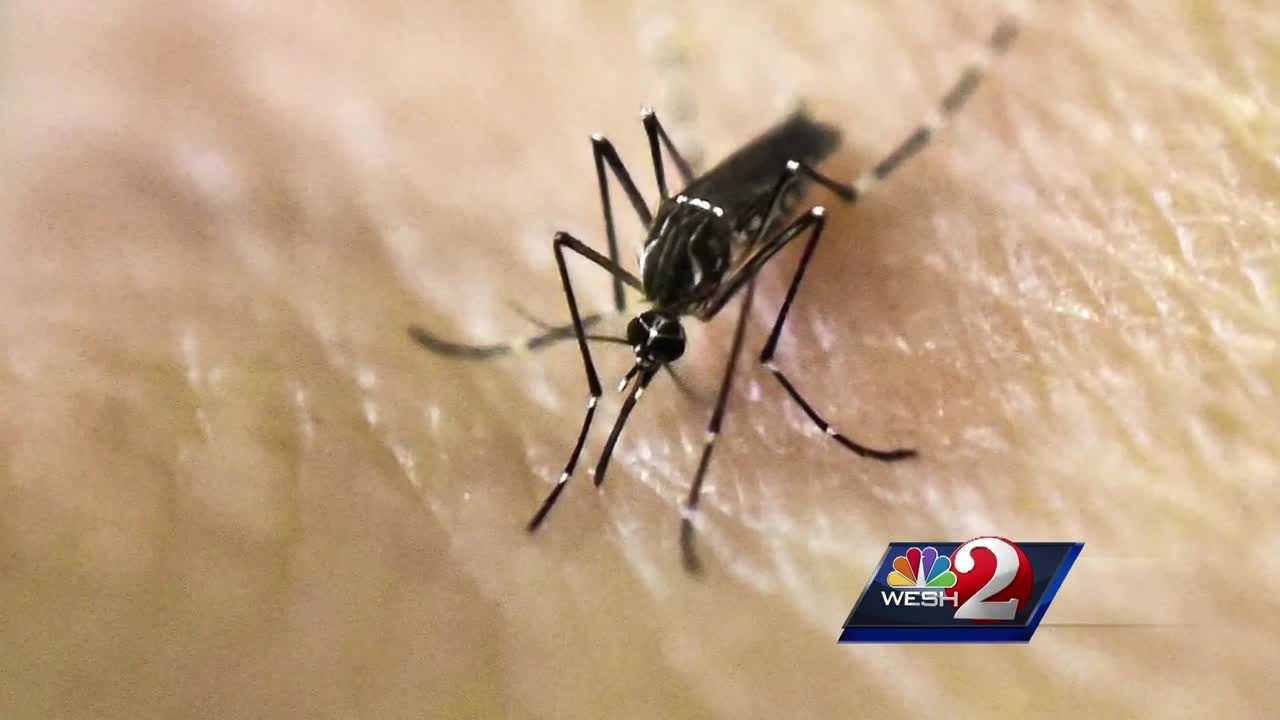 img-Orange County officials address Zika concerns