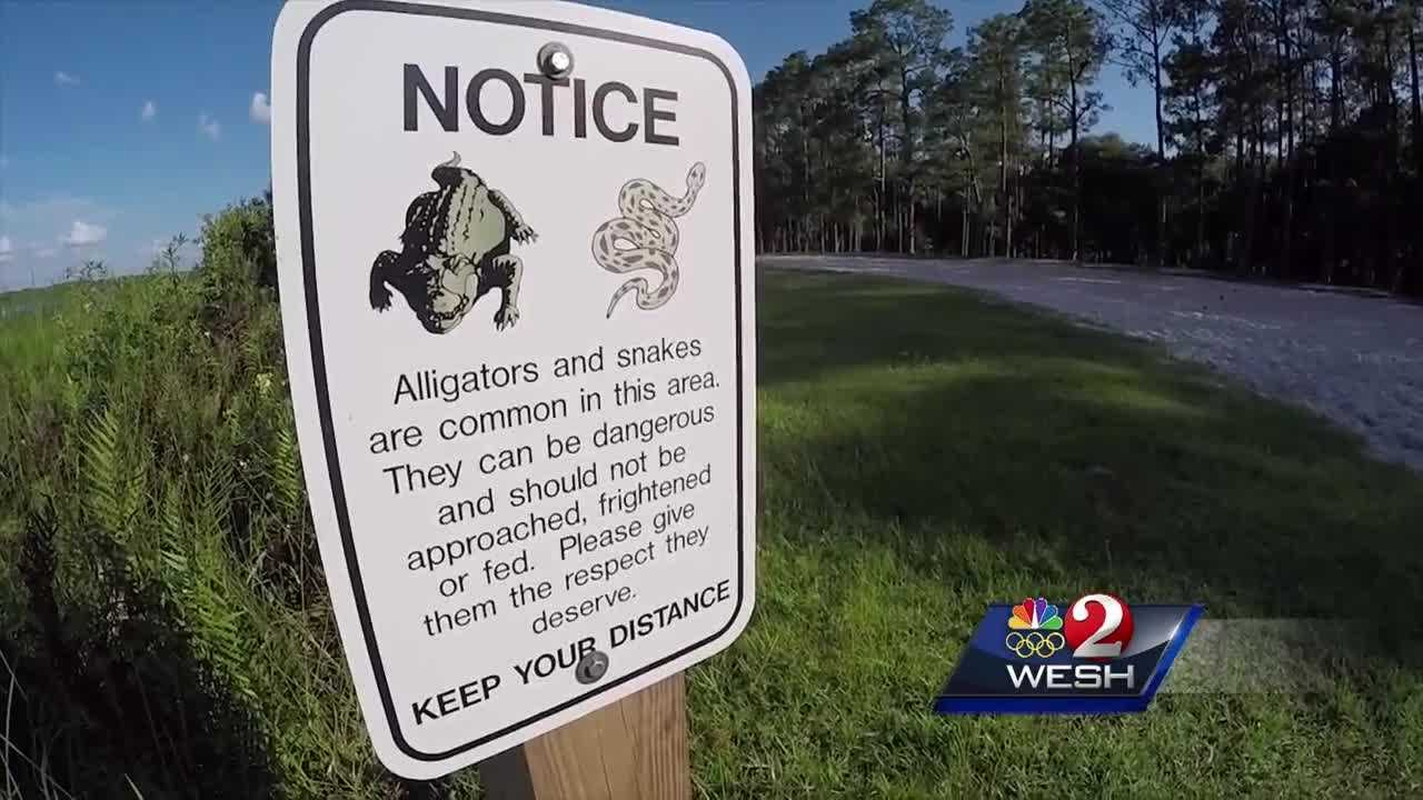 Dozens of new alligator warning signs posted in Orange County