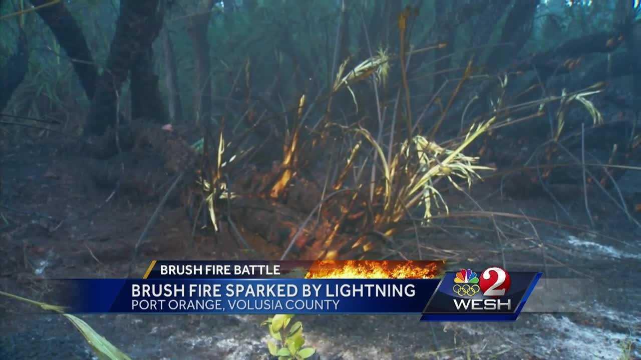 Port Orange brush fire sparked by lightning