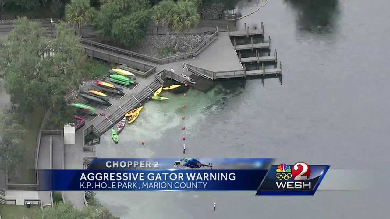 Aggressive gator warning issued at KP Hole Park