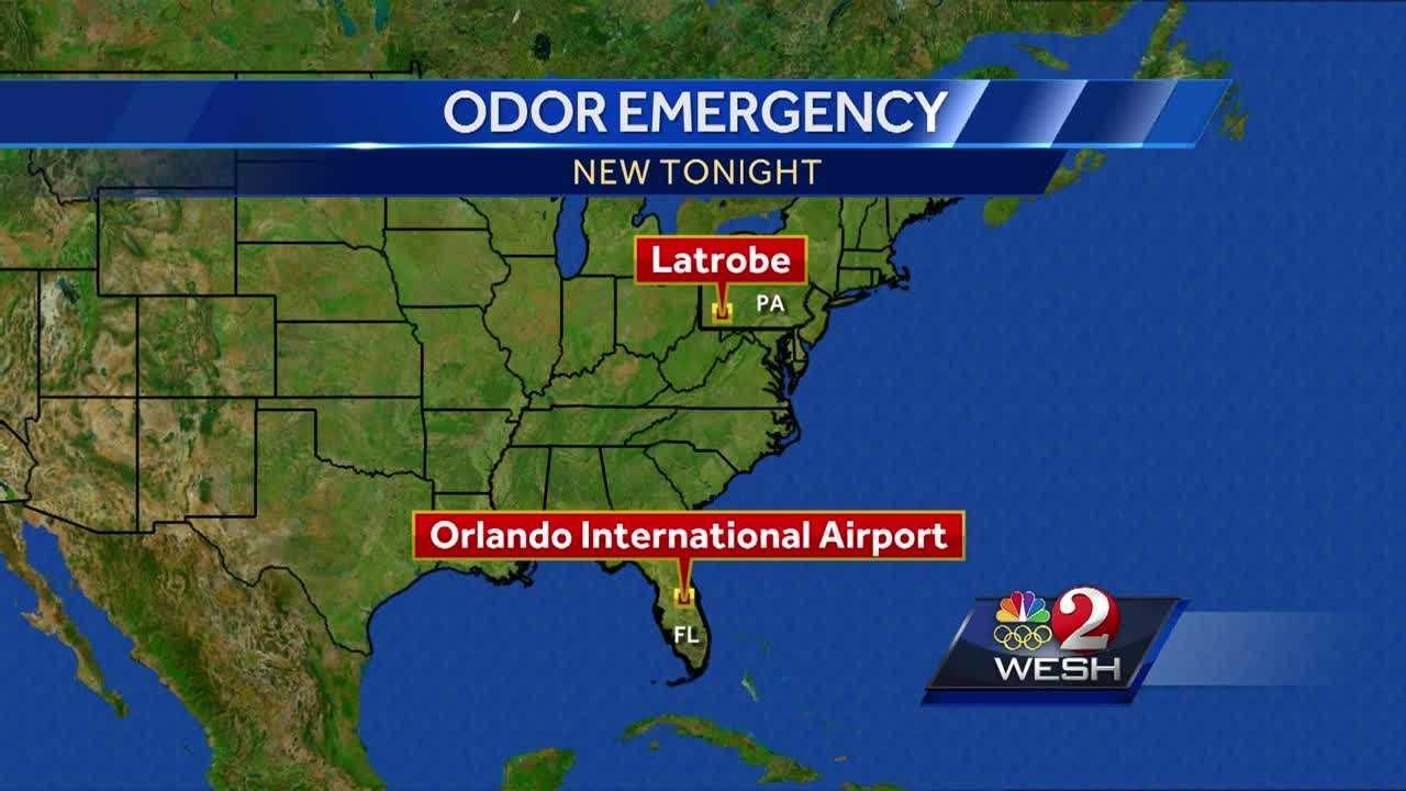 Several people hospitalized after strange odor reported on flight