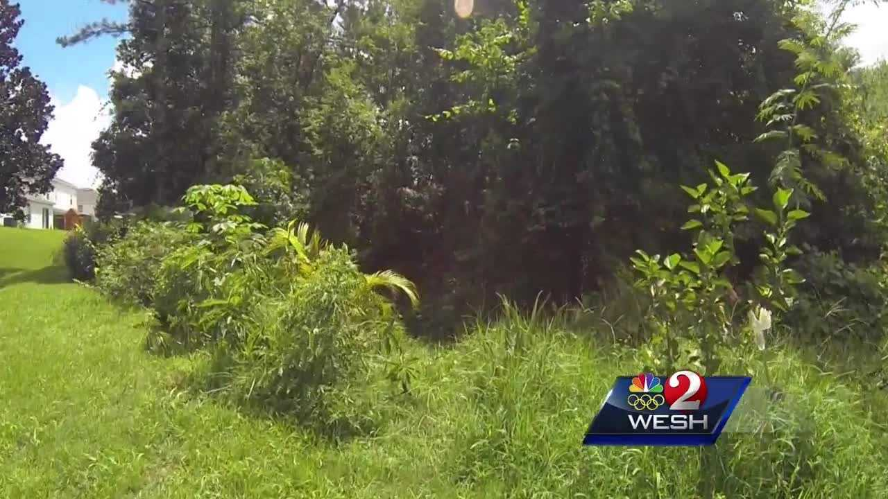 Sanford woman survives 3 days in ditch