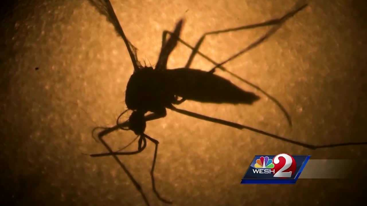 Counties working to prevent spread of Zika after rain