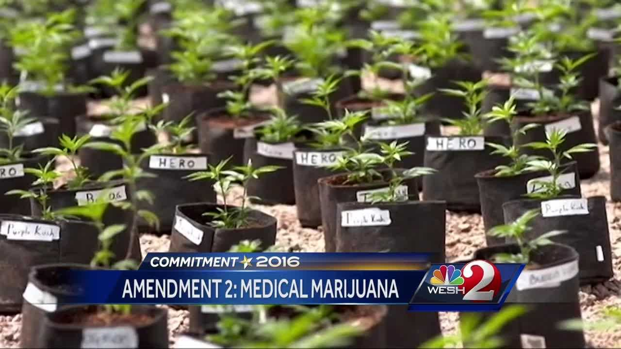 Voters to decide on proposed amendment on medical marijuana