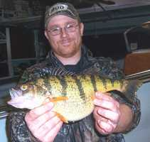Perch, Yellow (Perca flavescens): 2 lb. 11 oz. -- caught by Jeffrey Matts of Erie in 2010 at Presque Isle Bay.