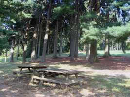 Mowed grass fields, a pine plantation and mature woods are other features of the park.