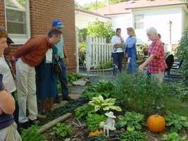 1. Find beauty in your own backyard/neighborhood.