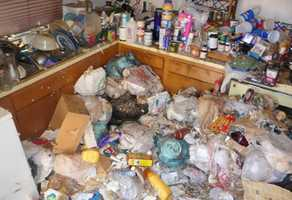 Hoarding has been the subject of numerous documentaries, reality shows and news reports recently, but as a disorder it is just starting to be researched.