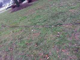 A burn mark in the yard where the power line fell is seen.