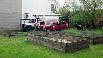 On Tuesday, crews removed a tree in the back yard so investigators could continue to dig.