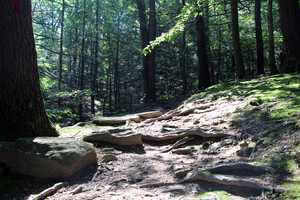 The park features 18 miles of hiking trails and is a trailhead for the 105-mile Tuscarora Trail.