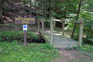 The Rattlesnake Trail is a 1-mile loop that winds through a mixed oak forest on the foothills of Blue Mountain.