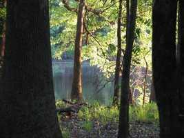 Congaree National Park- South Carolina: $3,000,000