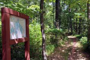 Thirty-five miles of trails are located throughout the park.