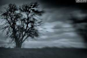 Opinions run the gamut when it comes to ghosts. Are they real? Do they communicate? Can you take a picture of one?