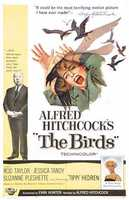 The Birds - another Alfred Hitchcock classic.