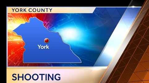 2.4.14 york shooting graphic