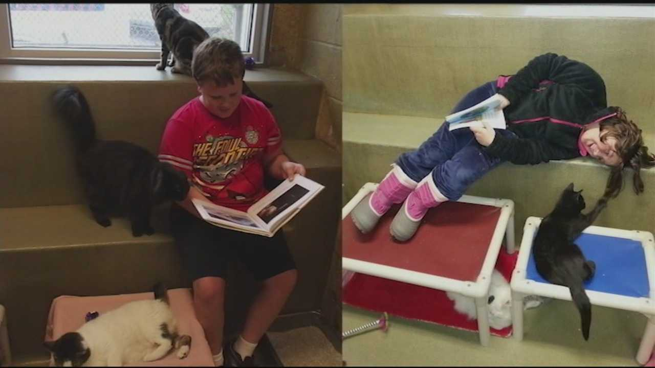 News 8 Today 3.28 cats and kids reading