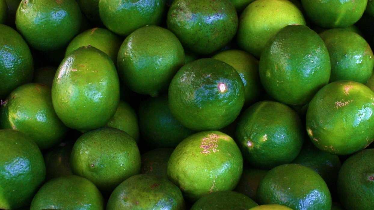 Limes at a grocery store. (Photo via Troy Tolley on Flickr: http://bit.ly/1esusxf  License: http://bit.ly/RaejCi)