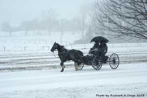 16: The region is home to one of the largest Amish populations in the United States. Pennsylvania Dutch Country was settled in the 1700s by Amish and Mennonites who continue to maintain an 18th century way of life.