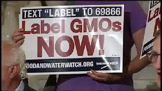 GMO pic 6.2.14
