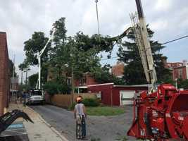 A crane is used to remove a tree from a home.