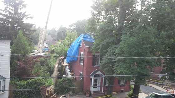 7.3.14 storm damage pic
