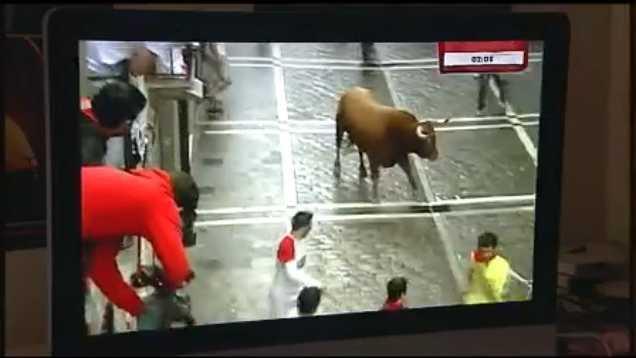 8.1.14 bull pic