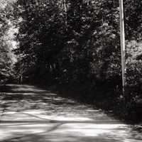 """Springettsbury Township native and horror author Brian Keene says the reason so many people stay away from - or daringly venture to - the hollow, is because of what took place there in the 1920s. """"John Blymire believed that Nelson Rehmeyer, believed to be a witch, cursed or hexed him,"""" explained Keene."""
