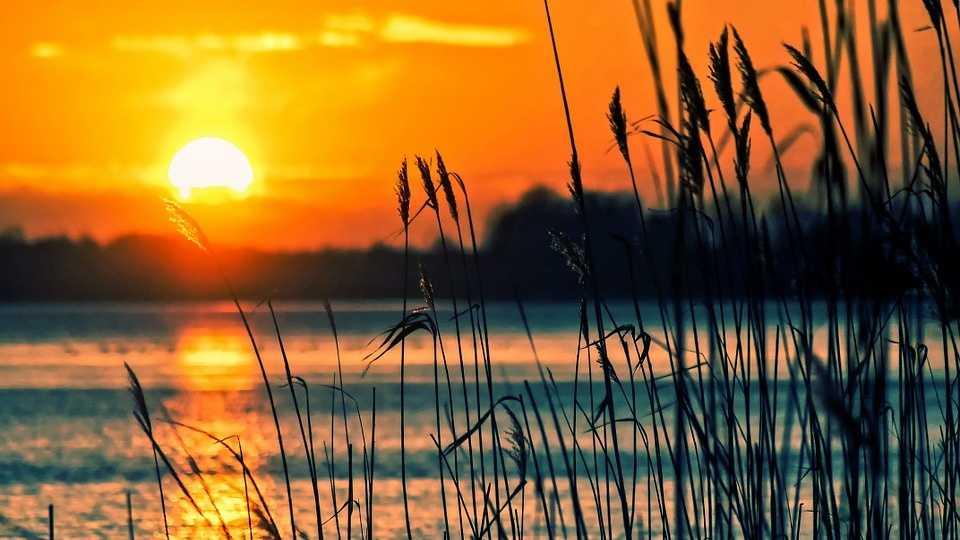 lake-696098_960_720.jpg