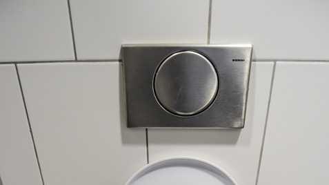 toilet 4.5.16.jpg