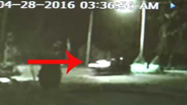 4.29.16 car caught on cam