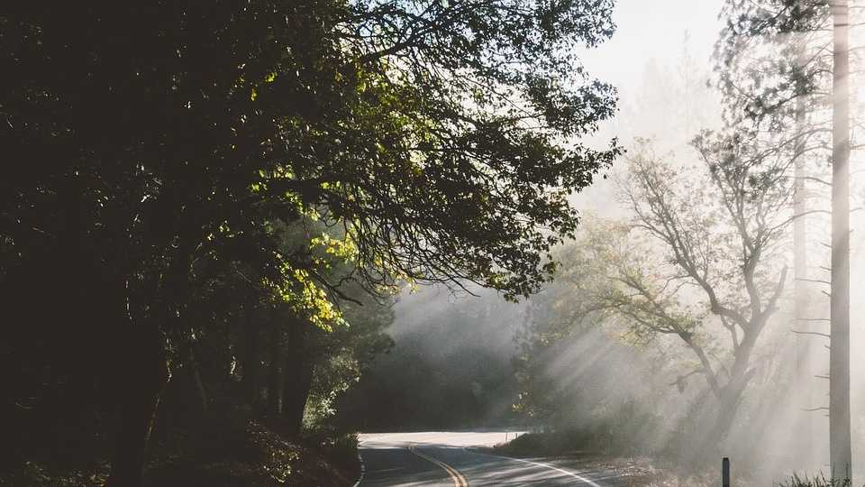roadway-1081812_960_720.jpg