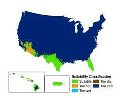 Here's a look at the boa constrictor's potential range in the U.S.