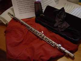 Aulophobia: Aulophobia refers to the fear of flutes.