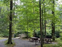 Two miles of hiking trails throughout the park offer views of the lake.