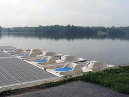 ... paddleboats ...