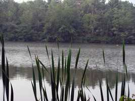 Memorial Lake covers about 85 acres of the 230-acre park.
