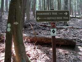 The Fisherman's Trail is 1 mile and wanders through a mature hemlock forest between the east picnic and main picnic areas.