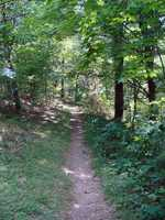 Click here for more information on the hiking trails.
