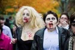 """The rise of zombies in pop culture has given credence to the idea that a zombie apocalypse could happen. In such a scenario zombies would take over entire countries, roaming city streets eating anything living that got in their way. The proliferation of this idea has led many people to wonder """"How do I prepare for a zombie apocalypse?"""""""