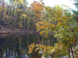 To visit the conservation area, take Route 322/22 to Route 225 north. After driving 4.5 miles, turn right on Camp Hebron Road just before entering the village of Matamoras. The conservation area is 4.5 miles down the road on the right.