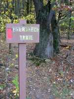 The Evergreen Trail is 1.1 miles of easy hiking and is marked with red blazes.