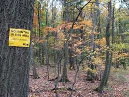 About 320 acres of the conservation area are open to hunting, trapping and the training of dogs during established seasons.