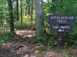The Appalachian Trail passes through the park. Click here to see photos of the trail in Cumberland County.
